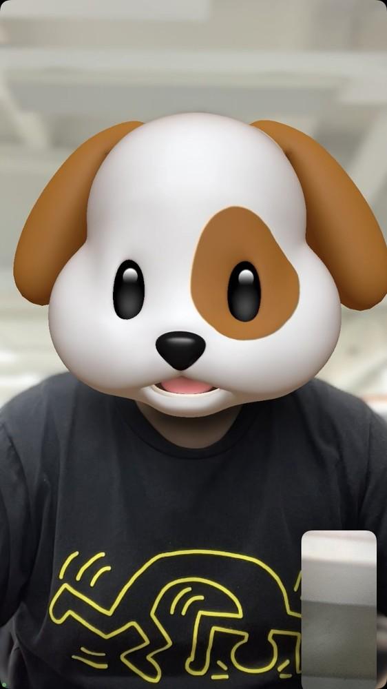 FaceTime支持人像模式(背景虚化效果)